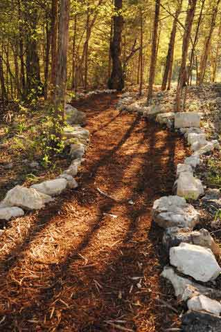Enjoy well maintained walking paths through the woods.